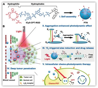 A Size‐Reducible Nanodrug with an Aggregation‐Enhanced Photodynamic Effect for Deep Chemo‐Photodynam