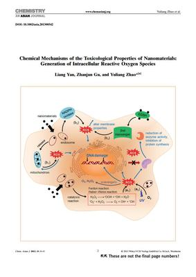 Chemical Mechanisms of the Toxicological Properties of Nanomaterials:Generation of Intracellular Reactive Oxygen Species